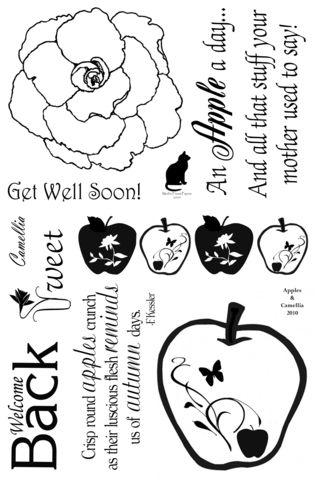 Apples & Camellia FinalFinalFinal